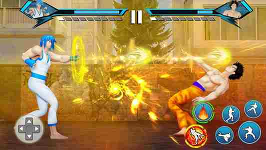 Karate king Fighting