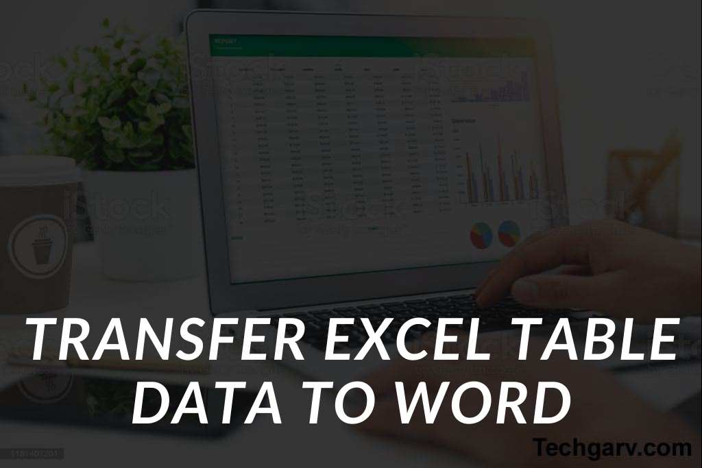 Transfer Excel Table Data to Word