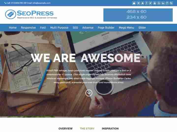 SEOPress seo friendly wordpress theme