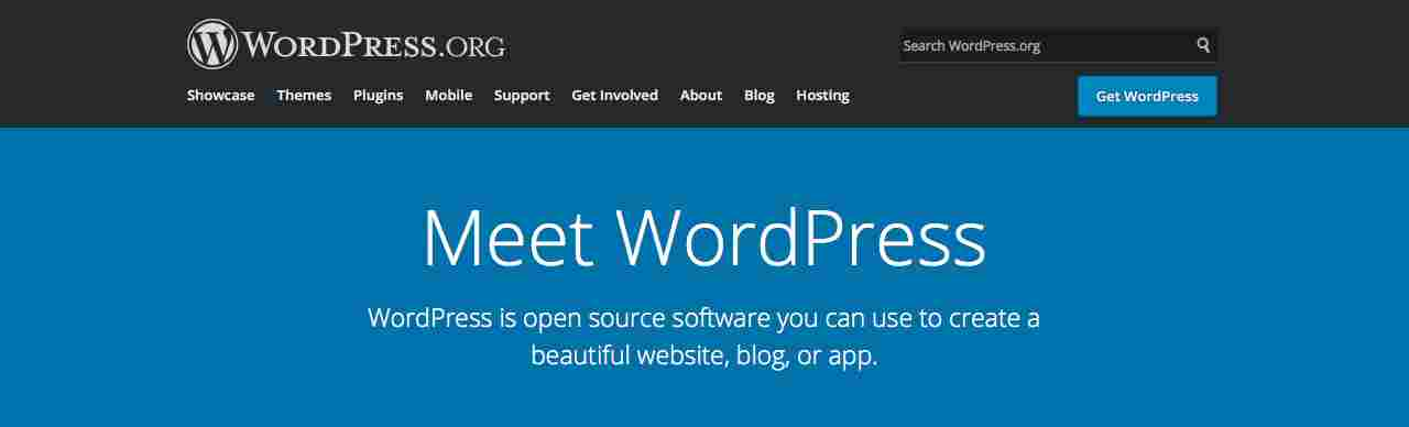 Using the WordPress platform as a way to become a successful blogger.