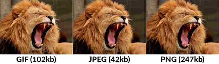 difference in quality of GIF JPEG PNG