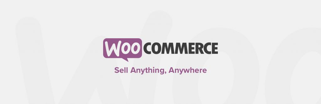 WooCommerce is one of the best ecommerce plugins.