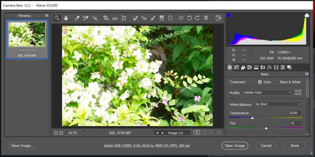 How to Sharpen Photos in Photoshop Using Camera Raw Editor