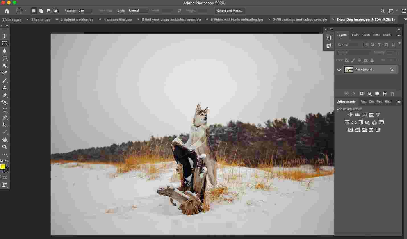 Open Photoshop and add the photo you want to add a snow effect to.